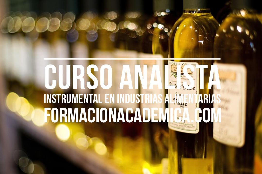 curso analista instrumental industria alimentaria